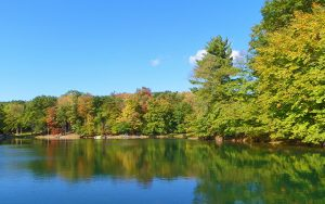 Decorative Photo showing Bimini Lake in Treasure Lake, near DuBois, PA.